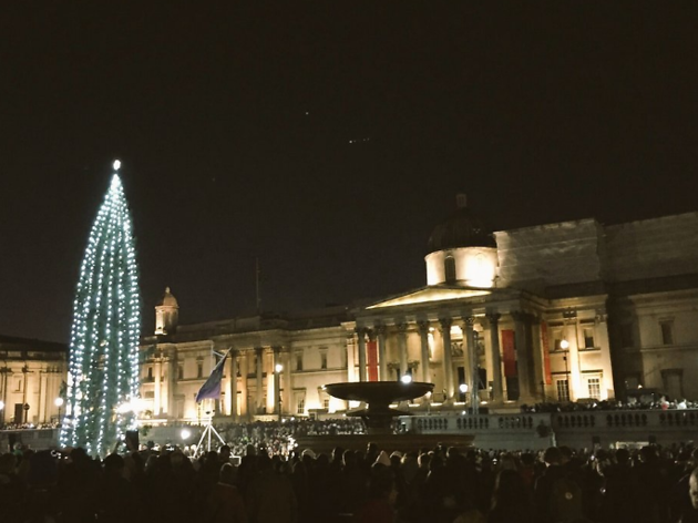Trafalgar Square Christmas tree 2016