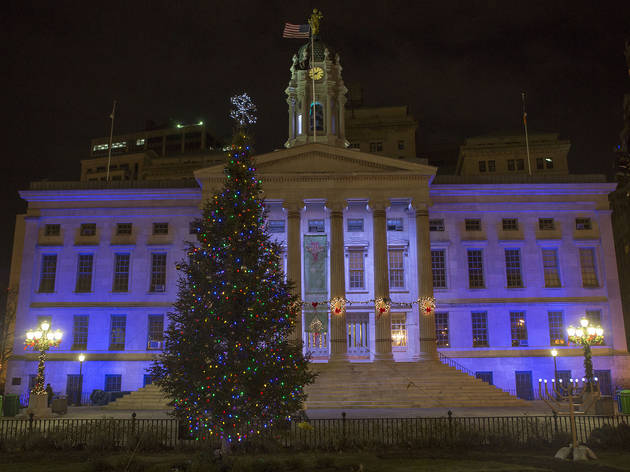 Brooklyn Borough Hall holiday tree