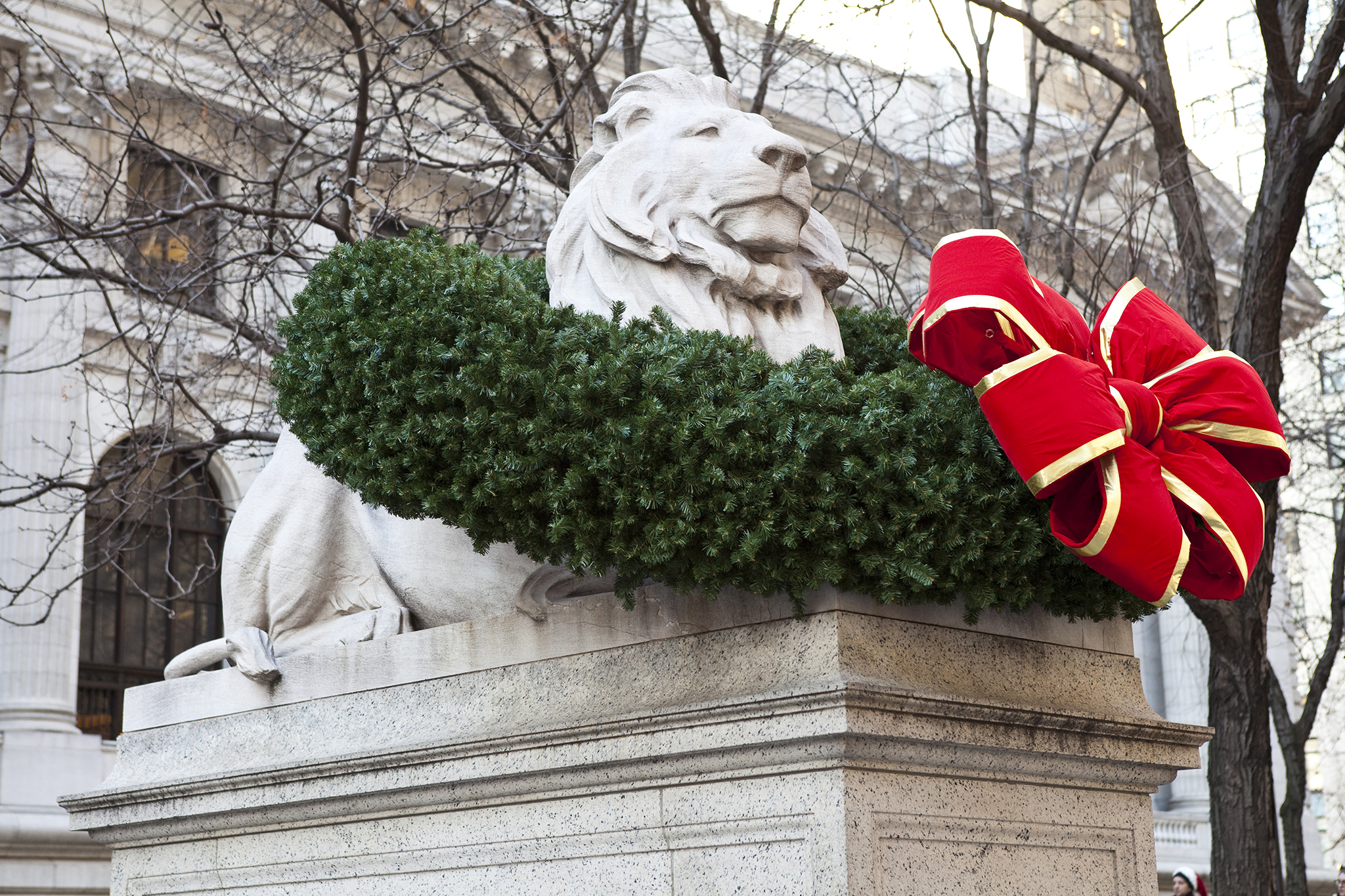 Alternative: The lions at the New York Public Library