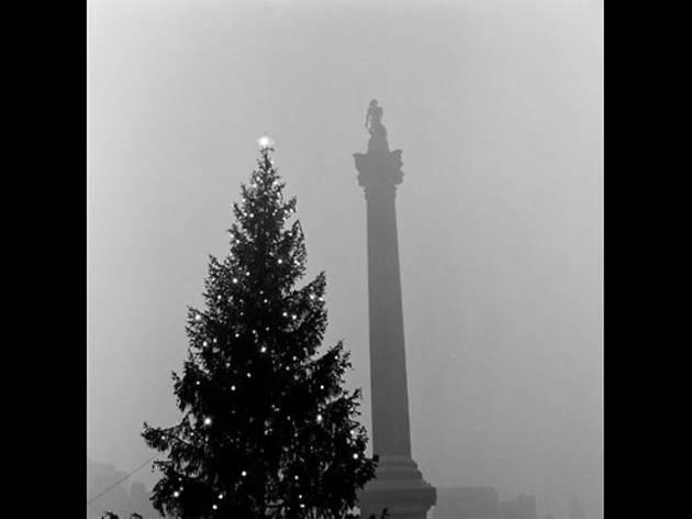 Trafalgar Square at Christmas, 1955