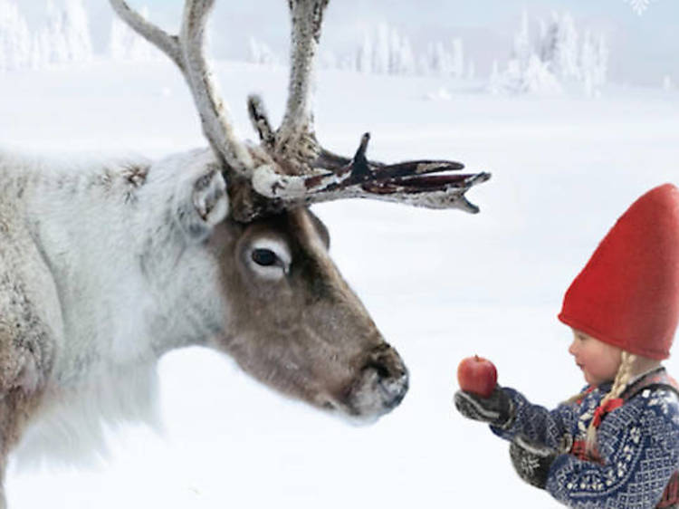 The Christmas Wish by Lori Evert, illustrated by Per Breiehagen (2013)