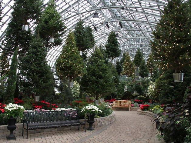 See floating Christmas trees at the Garfield Park Conservatory