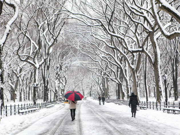 The best winter date ideas  in NYC