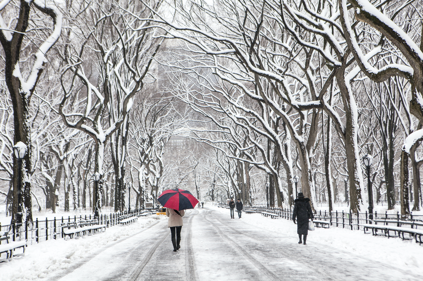 Best things to do outside this winter in new york city for Things to do in new york in winter