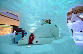 IFC polar resort