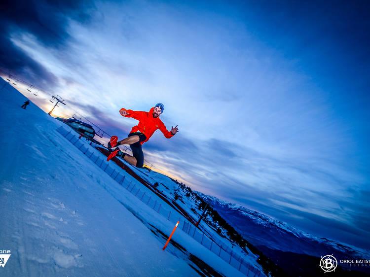 Dark Polar Race