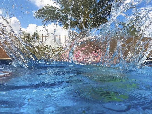 Waterproof smartphone photography gallery