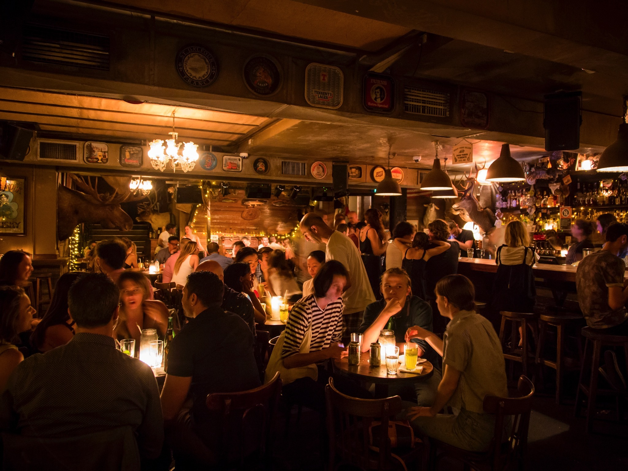 Shady Pines Saloon: Ten Years