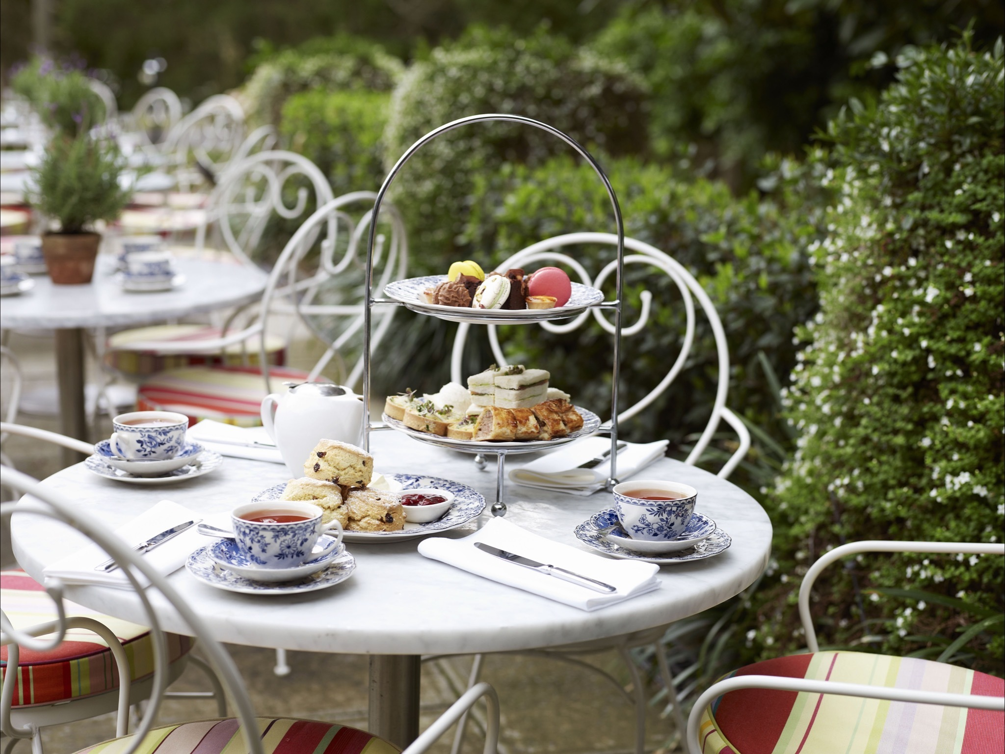 Book in for high tea at Vaucluse House