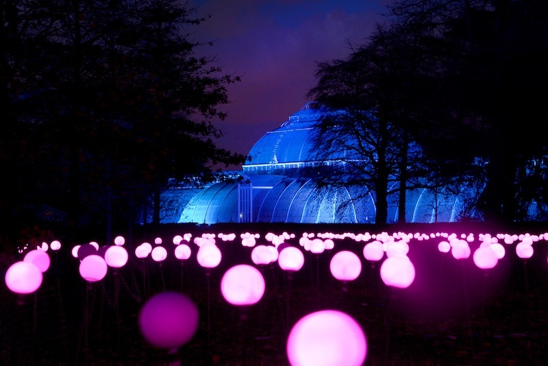 <p>Christmas at Kew</p>