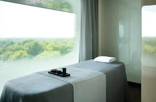 Four seasons spa treatment room