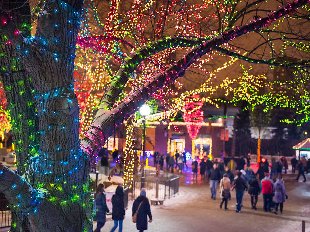 Lights Of Christmas.12 Places To See Christmas Lights In Chicago