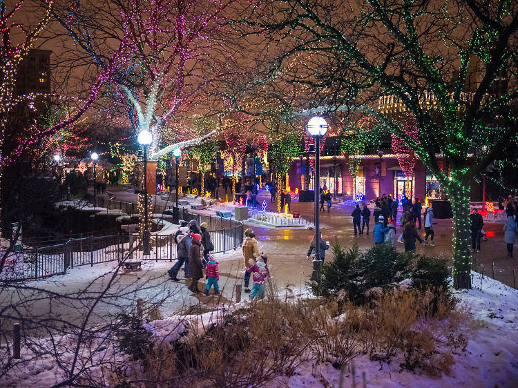 Twinkling photos from ZooLights at Lincoln Park Zoo