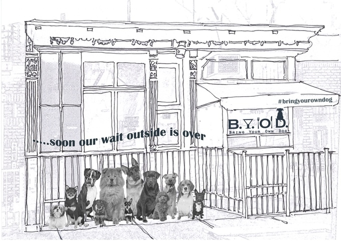 Check out these plans for a Bring Your Own Dog café in Brooklyn