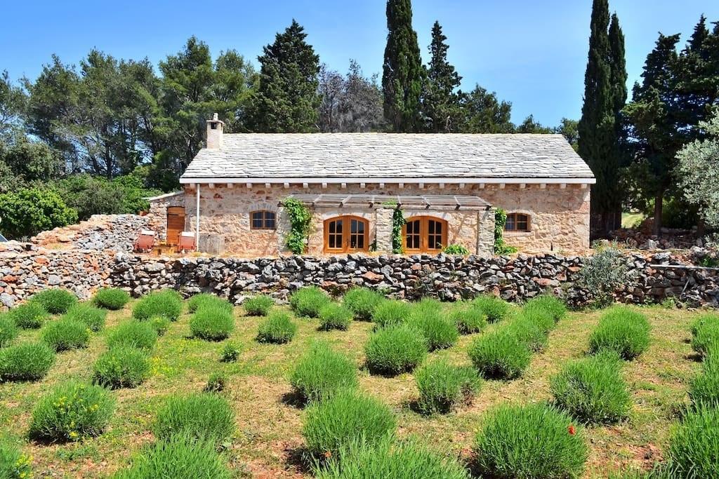 The eco-friendly farmhouse