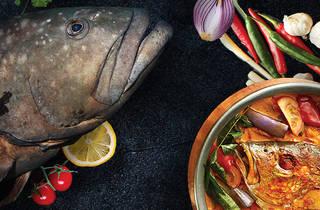 Giant Estuary Grouper dinner