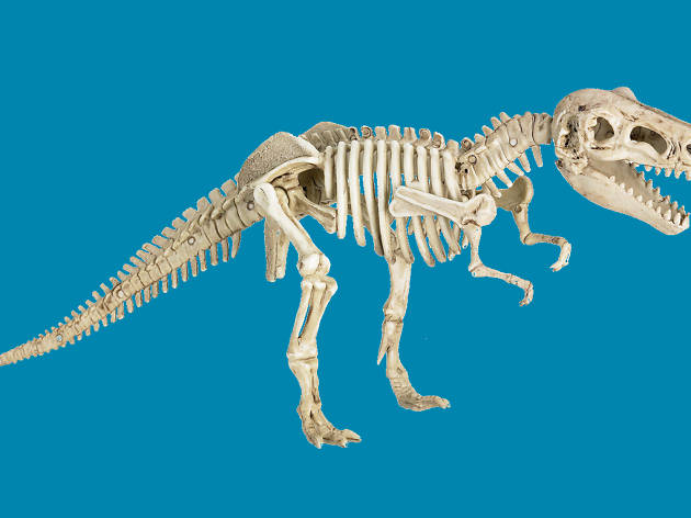 T-Rex skeleton figurine