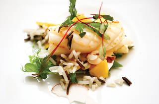 Bagos - Arroz Selvagem numa salada de lulas, manga e coco