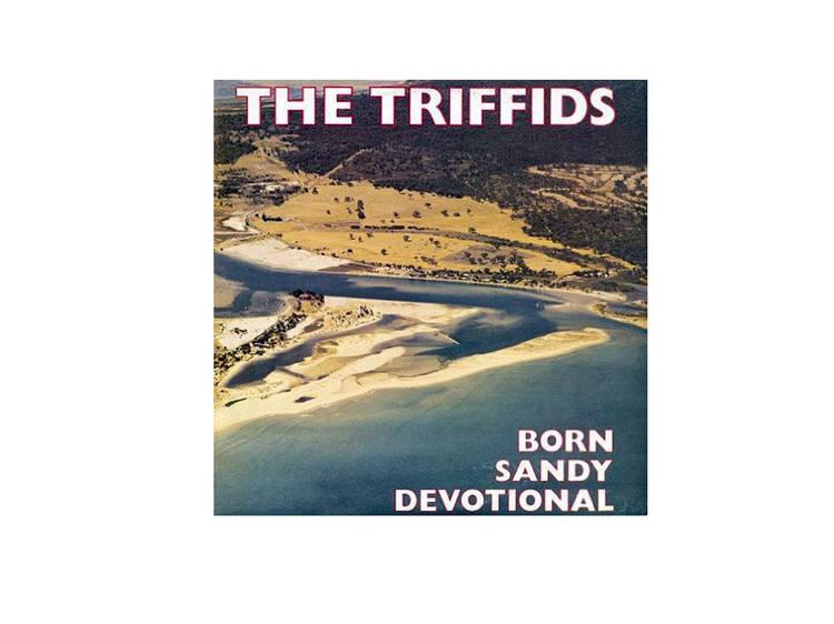 Born Sandy Devotional (1986), por The Triffids