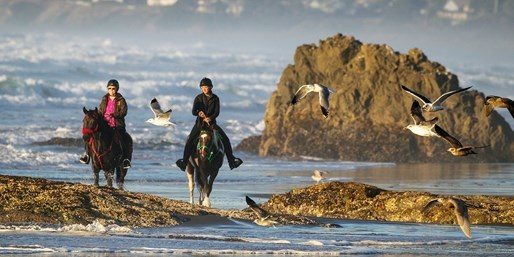 Ride Horseback along Mendocino Coast