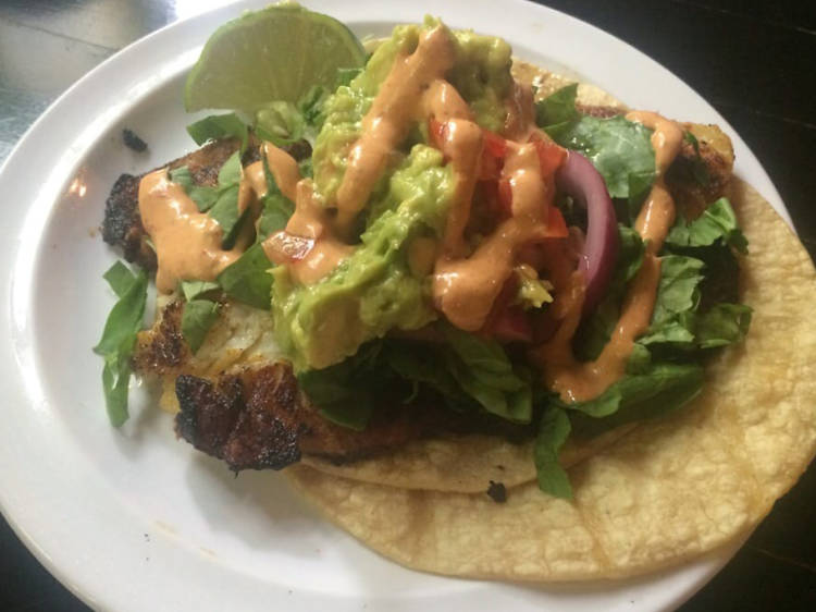 Fish taco at Tamale House East