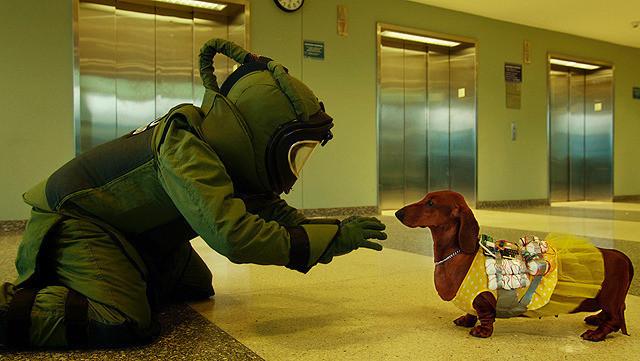 トッド・ソロンズの子犬物語
