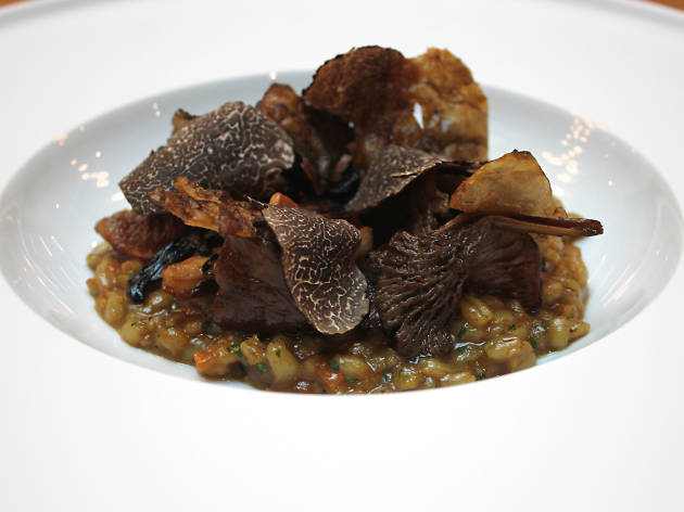 best vegan dishes in london, pollen street social, pearl barley risotto