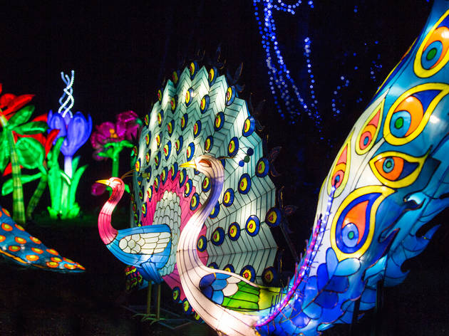 Image result for MAGICAL LANTERN FESTIVAL