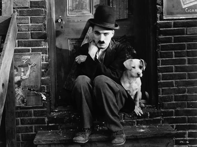 Vida de perro (A dog's life, 1918)
