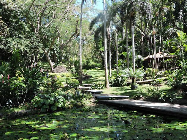Fiji Garden of the Sleeping Giant