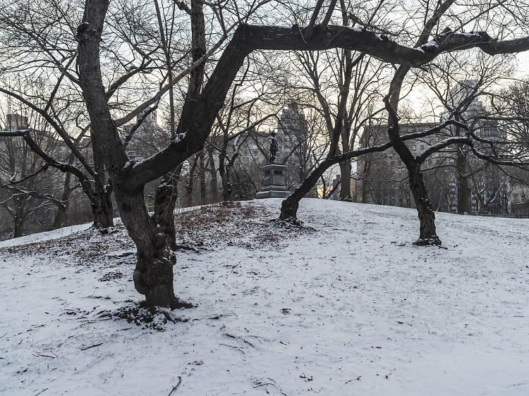 Pilgrim Hill, Central Park