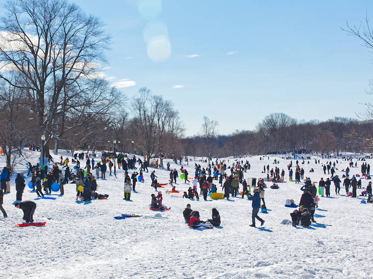 The best places to go sledding and where to drink after