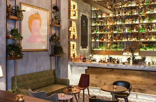 5 Cocktails & More