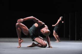 Batsheba Dance Company: Last Work