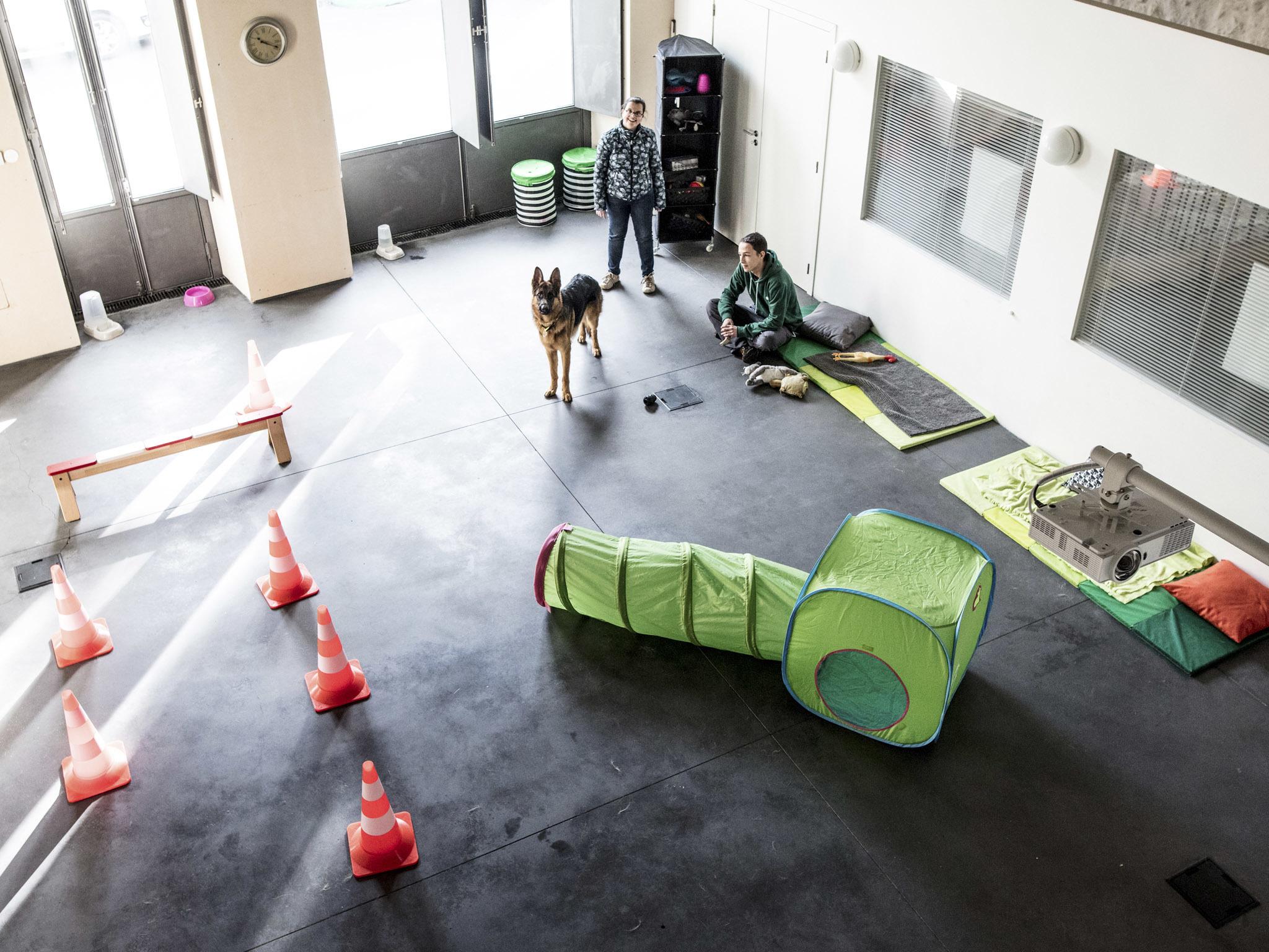 Instituto do animal