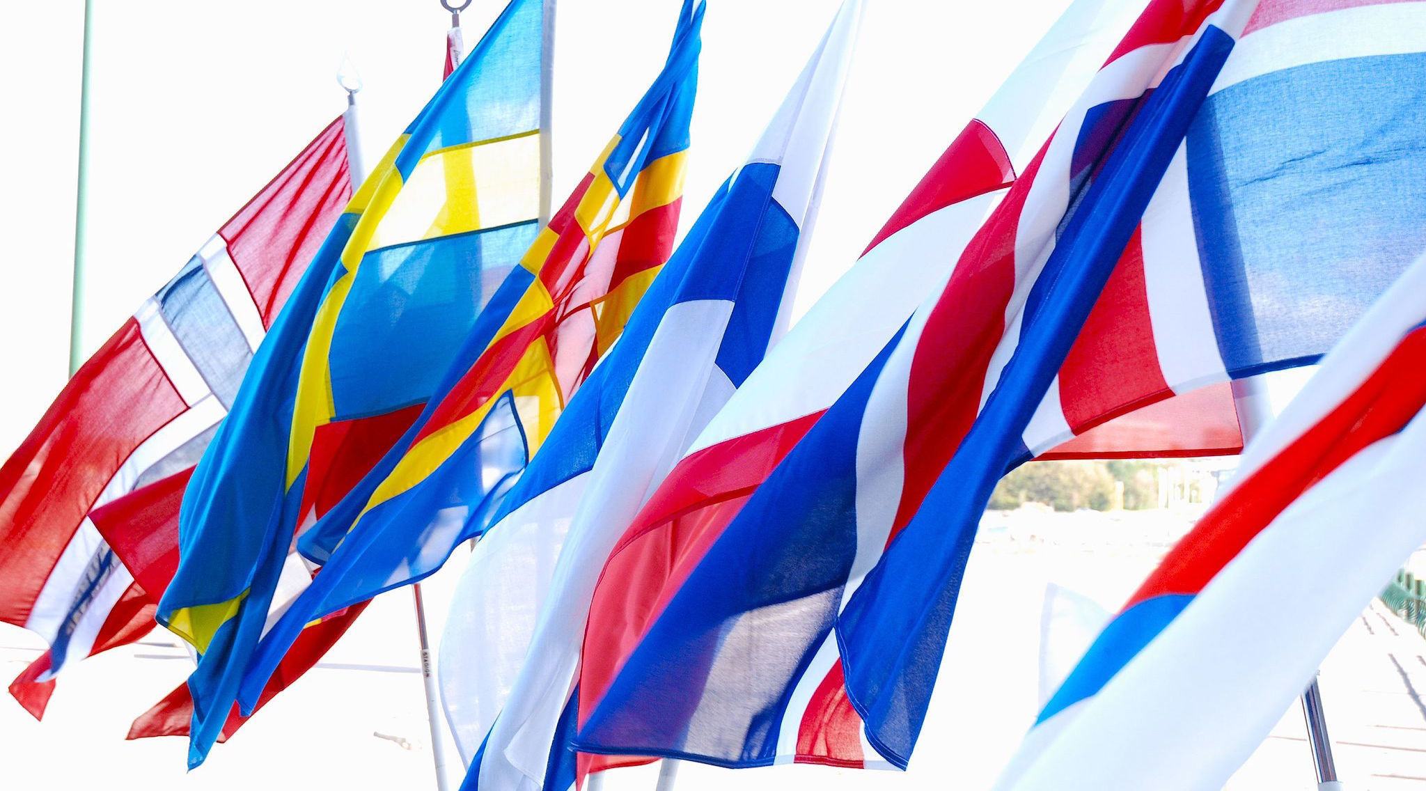 Nordic Matters: what's on