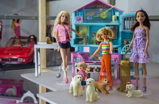 Barbie MUJAM (Foto: Mattza Tobón)