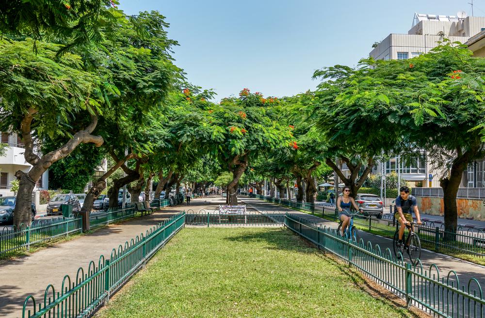 Promenade sur le Boulevard Rothschild de Tel-Aviv