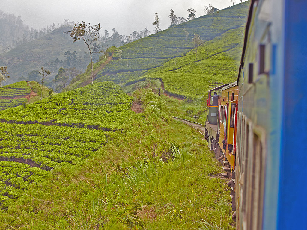 Train to Nuwara Eliya