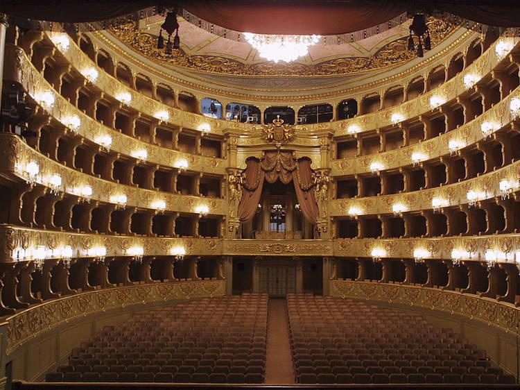 Teatro Nacional São Carlos transmite concertos online