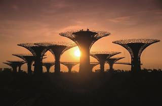 Gardens by the bay, sunrise