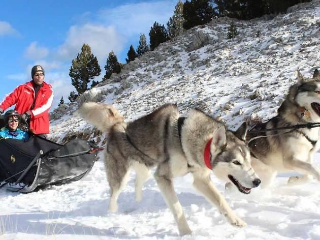 11 activitats originals per fer a la neu