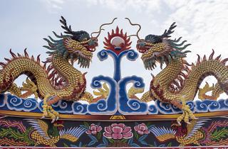any nou xines