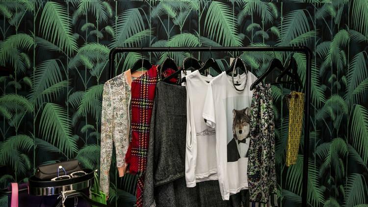 Compras, Loja, Decoração, Cabinet of Curiosities