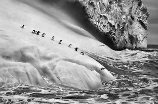 Sebastião Salgado: The World Through His Eyes