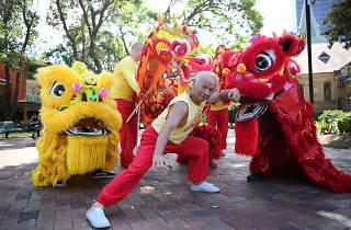 Parramatta Lunar New Year