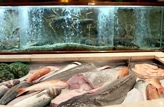Os Arcos - Montra de Peixe