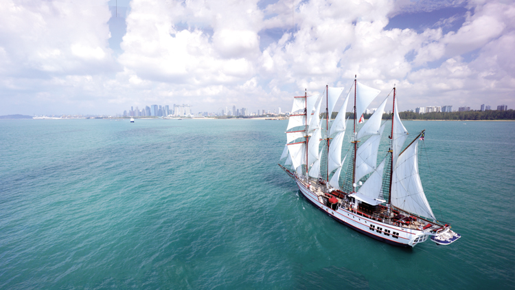 The Royal Albatross by Tail Ship