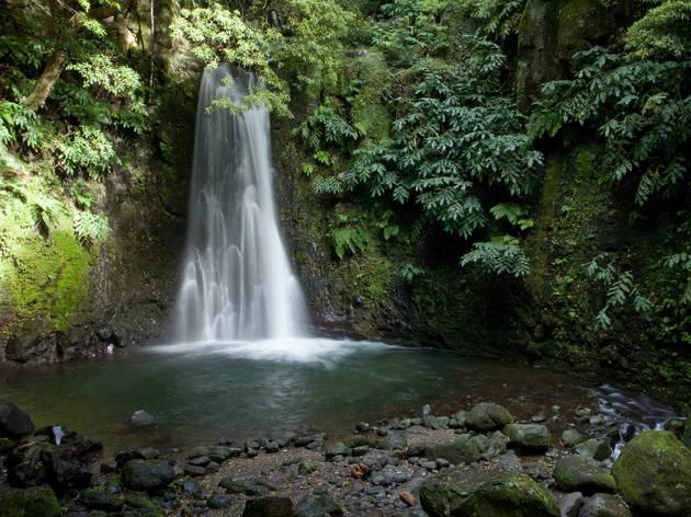 Ilha de São Miguel - Cascata do Salto do Pego