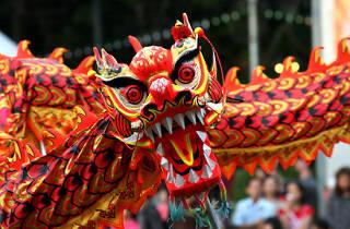 Chinese New Year generic dragon